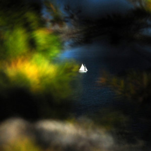 AcadiaNtlPark_02_lr